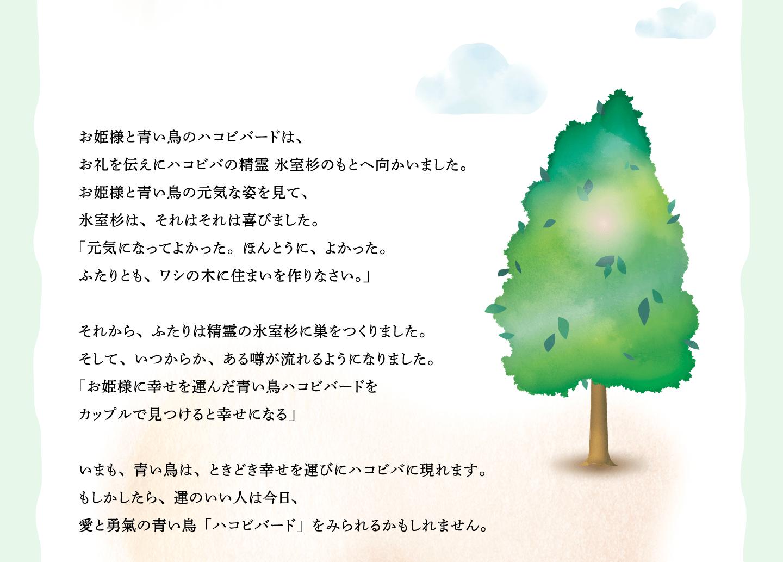 お姫様と青い鳥のハコビバードは、 お礼を伝えにハコビバの精霊 氷室杉のもとへ向かいました。 お姫様と青い鳥の元気な姿を見て、 氷室杉は、それはそれは喜びました。 「元気になってよかった。ほんとうに、よかった。 ふたりとも、ワシの木に住まいを作りなさい。」  それから、ふたりは精霊の氷室杉に巣をつくりました。 そして、いつからか、ある噂が流れるようになりました。 「お姫様に幸せを運んだ青い鳥ハコビバードを カップルで見つけると幸せになる」  いまも、青い鳥は、ときどき幸せを運びにハコビバに現れます。 もしかしたら、運のいい人は今日、 愛と勇氣の青い鳥「ハコビバード」をみられるかもしれません。